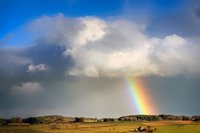 rainbow-4047523__340.jpg